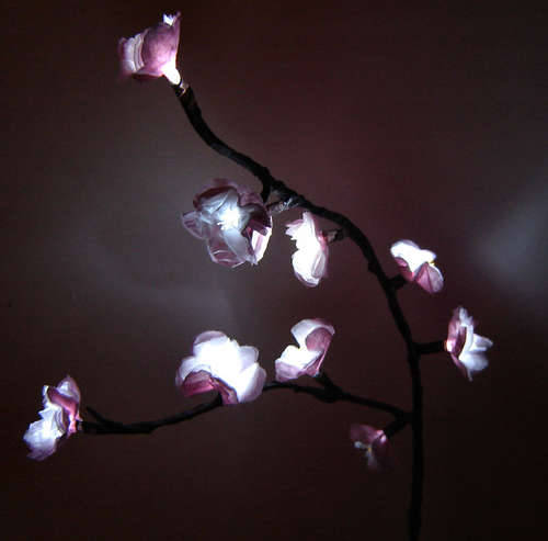 Cool homemade cherry blossom lights from instructables