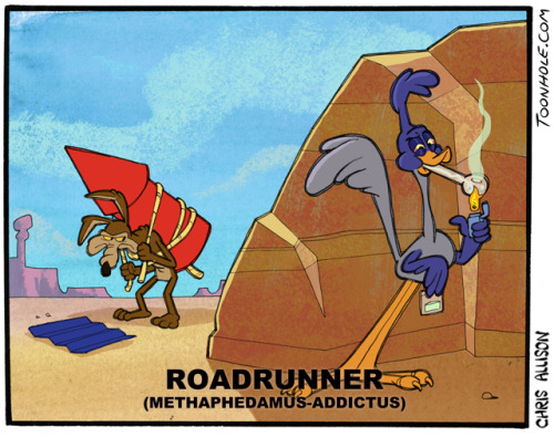 barefootmarley:  roadrunner's habit chris allison