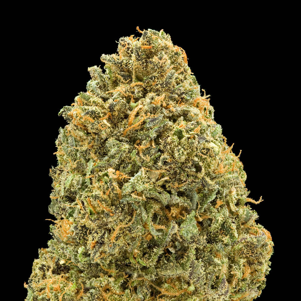 Favorite Strains: 1. Cherry Pie Sheeeeeeeesss maaaaahh cheerrry pahh!