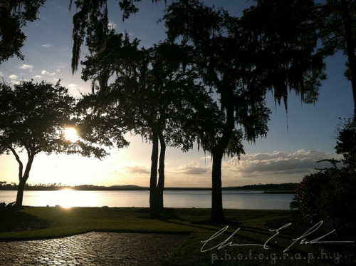 Sunset on Skidaway Island. by chelsea.parker.photo on Flickr.& again where I'm working this summer. Skidaway Island