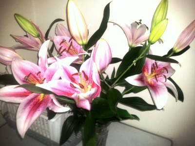 The first flowers Jack ever bought me were a beautiful bunch of lillies :)