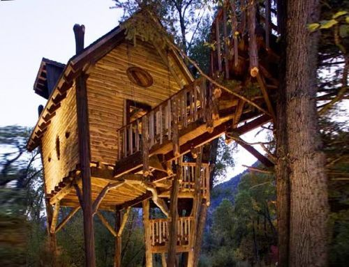 inhalelight:  i want to live the most simple life in a house in the forest   yes please
