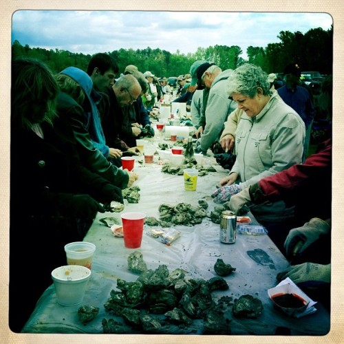 Annual Chuckatuck Oyster Roast, Suffolk, VA, April 2012
