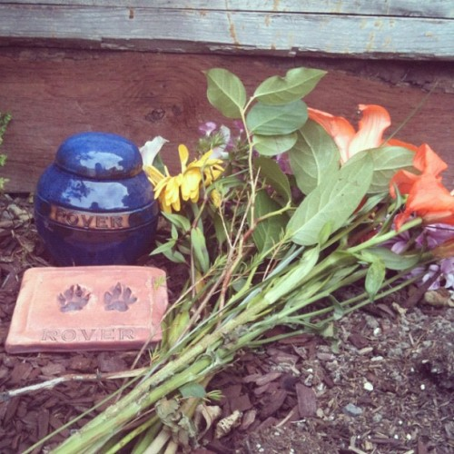 I do miss you my dear friend. (Taken with instagram)