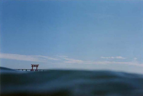 Asako Narahashi - Half awake and half asleep in the water