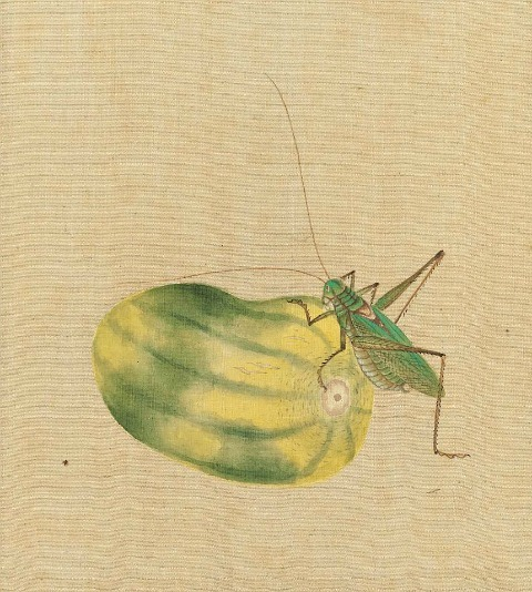 Unknown (Japan) Grasshopper and Melon 19th century