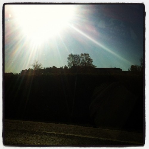 I love the sun! #sun #happy #awesome #weather #may #2012 #iphone4 #instagram  (Taken with instagram)