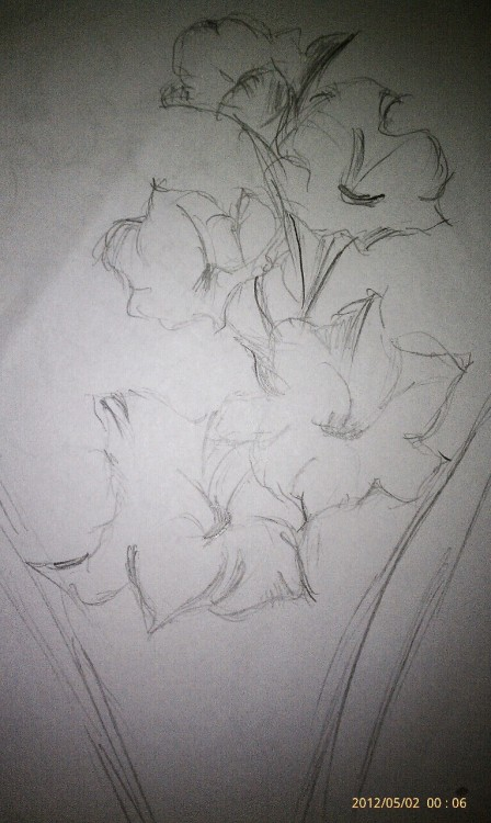 My pencil sketching to add to my Morrissey tattoo…this will bring more colors like some green, yellow, with white….