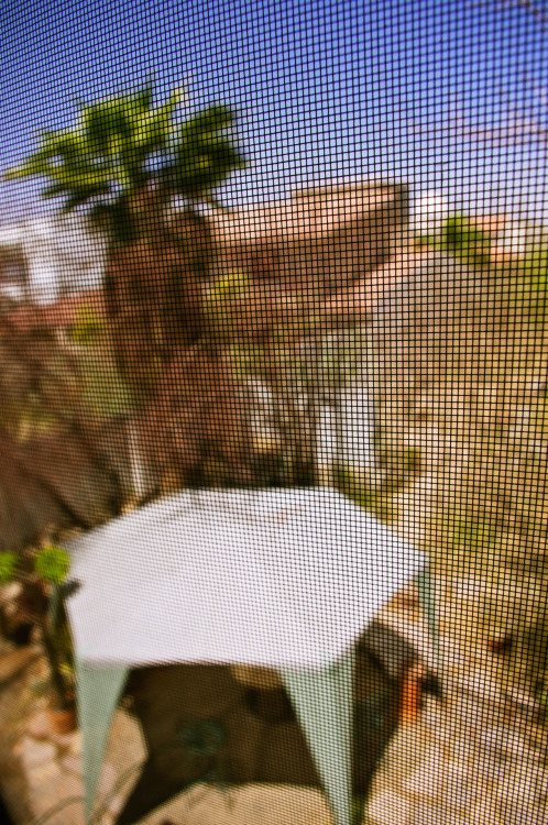 The mosquito net patio.