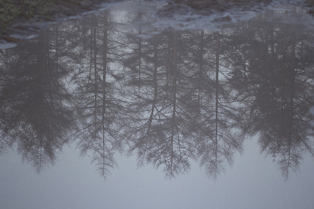 the-confines-of-fear:  Reflection by dawn by Mathijs Delva on Flickr.
