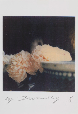 sublimespy:  CY TWOMBLYPeonies, Bassano in Teverina, 1980 Color dry-print Framed: 18 3/4 x 17 1/2 inches  (47.6 x 44.5 cm) Ed. 1/6