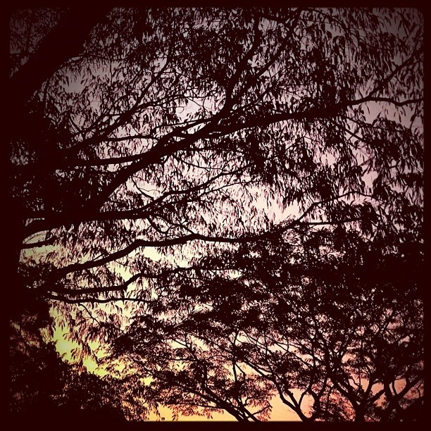 Eerie orange sky (Taken with Instagram at Meralco Lopez Building)