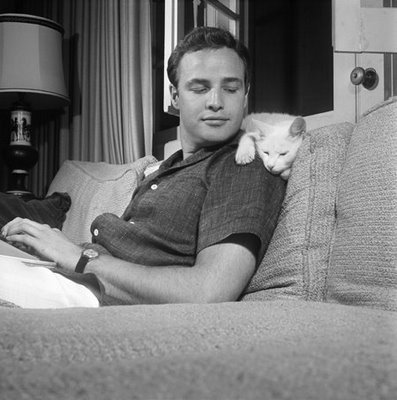 Marlon Brando and cat.