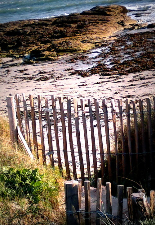 "fruitjuiceandclicks:  Seaside fence My contribution for the new theme ""On the Fence wednesday"" on G+, all the contributions  here"