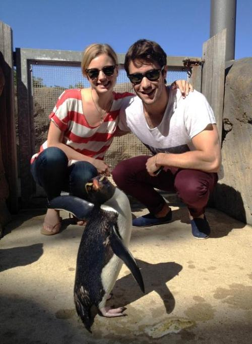 yoshirocks:  Emily VanCamp and Josh Bowman at Taronga Zoo, Sydney. Can't believe the one day I wasn't working at the zoo this week they came in! My friend did the tour and said they were the most lovely and down to earth people, plus they love penguins so got to meet Mr Munro one my favourite animals in the entire world