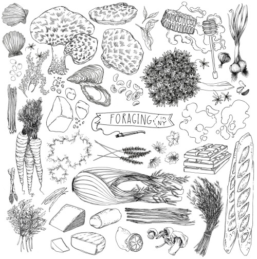 killtherecipe:  illustrations for garden gather dinner @lucyengelman @foodbookfair