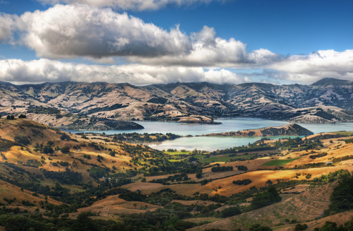 juanzugo:  Driving to Akaroa by Stuck in Customs on Flickr.