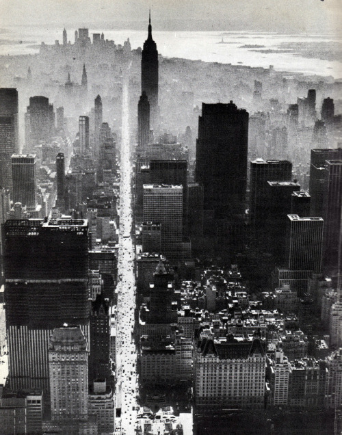 kari-shma:  New York City