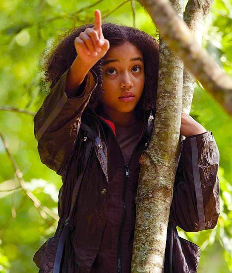 Hunger Games Rue