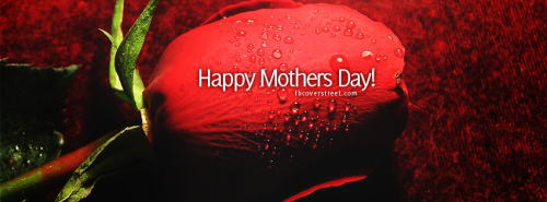 Happy Mothers Day Red Rose Facebook Cover