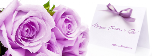 Happy Mothersday Purple Rose & Card Facebook Cover