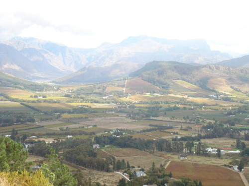 Franschoek Valley, Western Cape South Africa