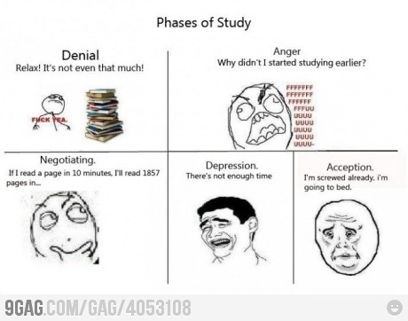 9gag:    Phases of Studying