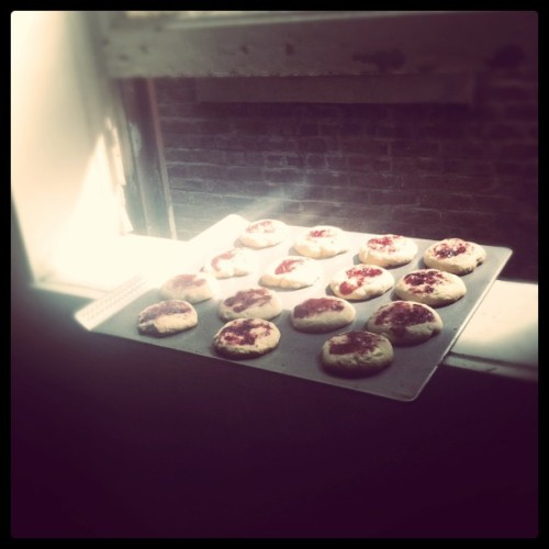 Good morning, raspberry cheesecake cookies! (Taken with instagram)