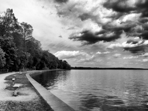 The Potomac at Mount Vernon. May 1st, 2012.