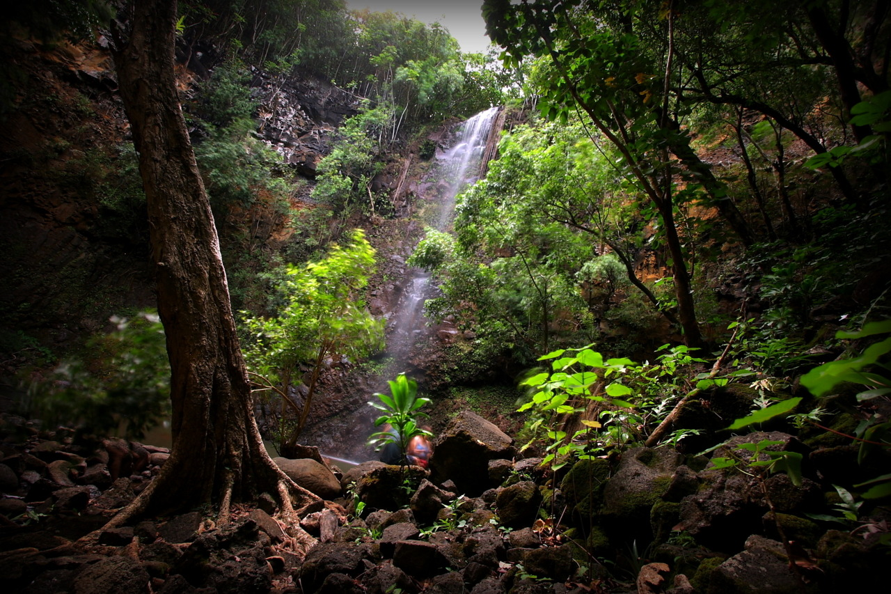 Hidden waterfall on Kaua'i