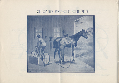 For bicycle month - a curious use for a bike: powering an electric clipper to groom your horse. From the Chicago Flexible Shaft Co. 1904 catalog.