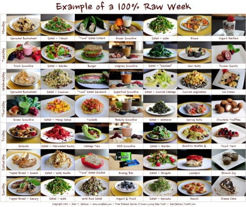 A sample 100% Raw Food Week.I'm often asked what 100% raw looks like. So I created this chart to represent the components of a day's intake. The main entrees (breakfast, lunch and dinner) represent 20% each of the days intake, totalling 60%. The remaining 40% is represented by two salads before the lunch and dinner entrees, a snack and a dessert. The three entrees and the remainders equal 100%. Change the chart to suit your needs. If you eat a big breakfast, but no dessert, maybe breakfast represents 30% of your day's intake. The main thing is that you can see what a 100% week can look like.