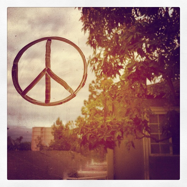 Drawn. #photoadaymay Day 1: Peace #window #peace #drawn #marker (Taken with instagram)