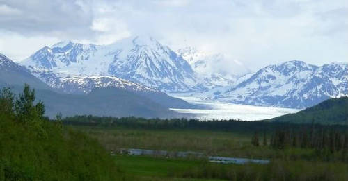 New listing: Caretakers needed for an orchard and museum located in Alaska. Details: The Caretaker Gazette's latest email broadcast. www.caretaker.org