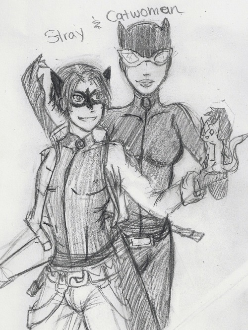 This is a drawing of my Young Justice Fanfic called A Stray and Clone about Tim Drake as Catwoman's sidekick called Stray :D There had to be a Tim in the Young Justice (this was before the new Young Justice: Invasion come out) he just had to. Since the ages are so different in the Cartoon I thought why not have Tim the same age as Dick, Jason a year older and a young drug dealer, Stephine the same age as Tim and daughter of a weapons arms dealer (ok I forgot about what her father that made her become Spoiler so I made it that up) Cassandra same age as Jason and Stephine body guard and since Starfire was not going to come out (I think) I decided she's in my Story :D Can I still consider them as the Bat family but they don't interaction with Batman?