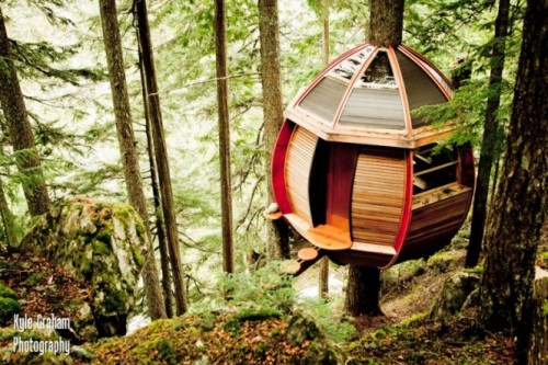 homedesigning:  (via Hidden Egg Treehouse by Joel Allen)  The photos are definitely worth the click through.