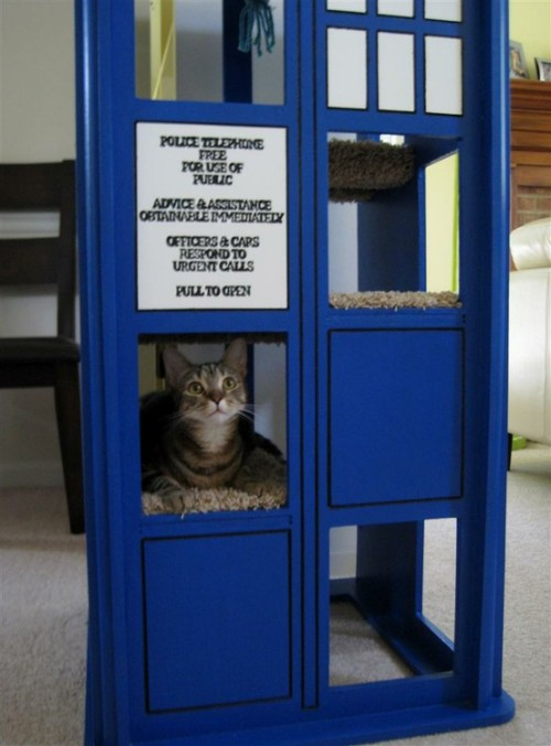 eccentricgeekery:  Tardis Cat Tree.