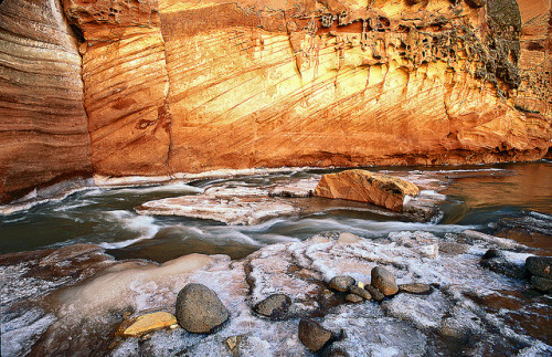 sapphire1707:  Set in Stone by bob simari on Flickr.  In Capitol Reef National Park.  The cross-strata were created by migrating sand waves or sand dunes, clue me in if you can tell which. This park also contains deposits from a Permian reef.