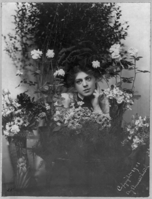 locpix:  Ethel Barrymore. 1901