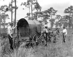 Hitting the trail in Tampa, 1880's.