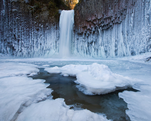 ecocides:  Frozen Abiqua falls, Oregon | image by Jesse Estes