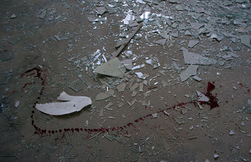 politics-war:  A trail of blood next to shattered glass in a school complex near the site of a suicide bomb attack at a guesthouse. Photograph: Johannes Eisel