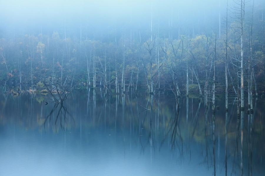 handa:  500px: Popular Photos - Foggy Lake by yume -