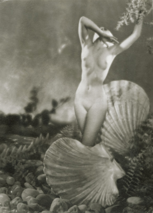 Angelo (Paul Funk) - My Venus, 1939
