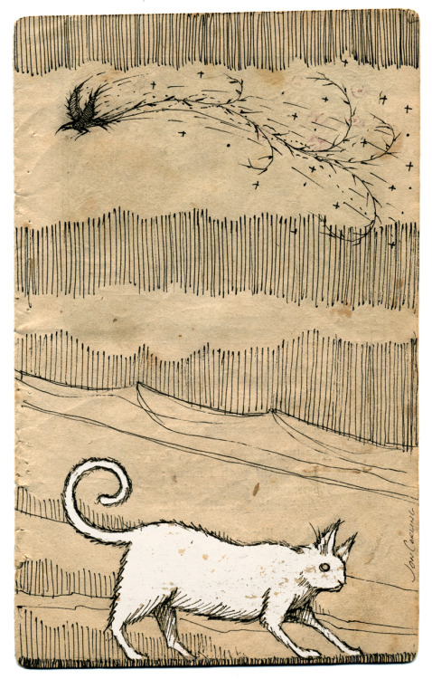 joncarling:  'The cat made of chalk searches for the bird made of coal.'