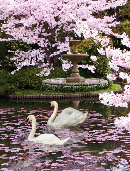 swansong-willows:  (via (2) Bonnie Anne Pinard / Pinterest)