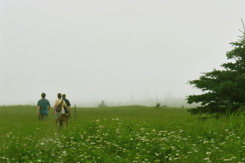 Good friends, a summer day and hiking in the mist at Kejimkujik Seaside Park, Port Joli, Nova Scotia.