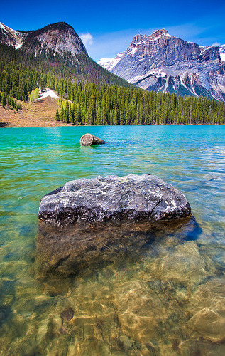 crucium:  Emerald Lake (by chris lazzery)