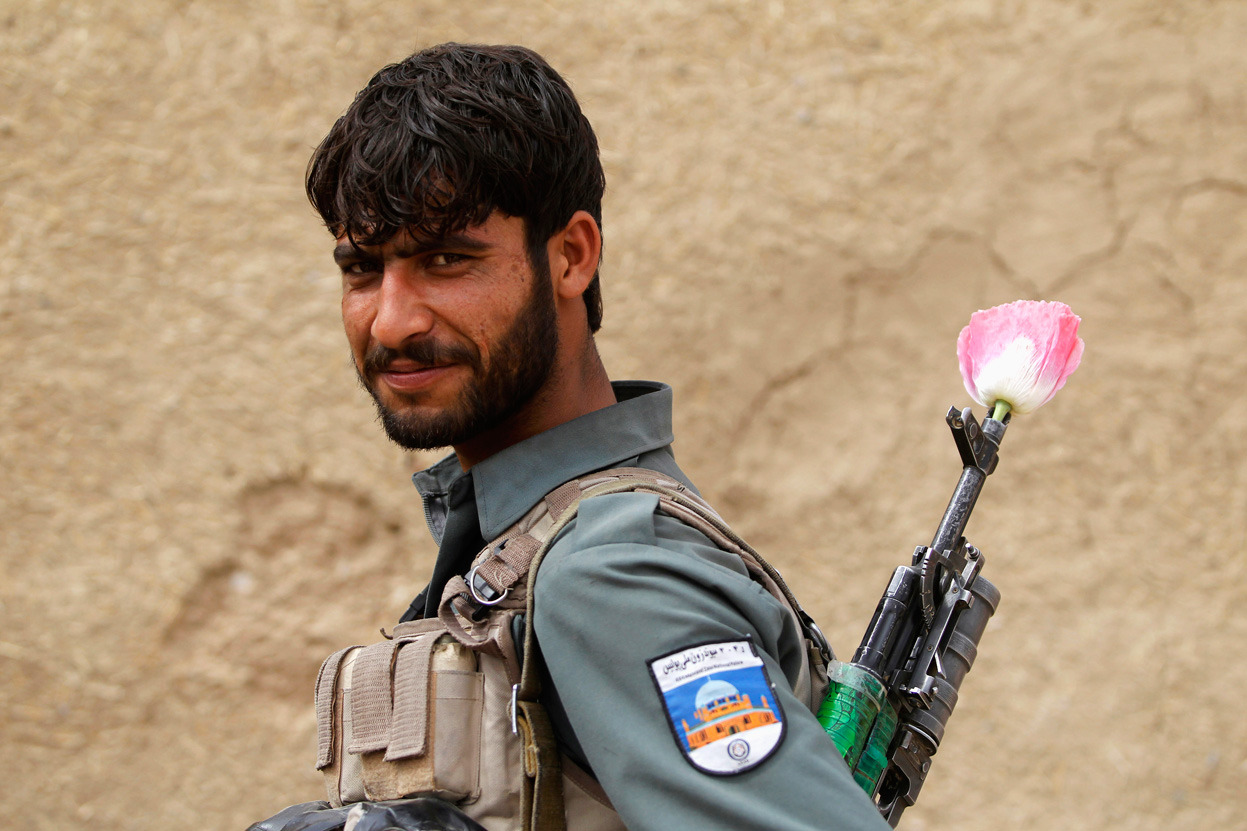 An Afghan policeman carries a poppy flower in the barrel of his gun (Reuters/Baz Ratner)