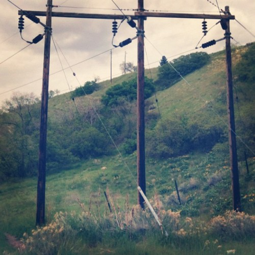 Telephone Tower #nature #grass #location #view  (Taken with instagram)